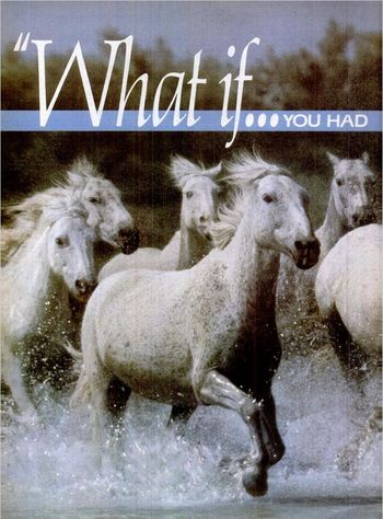 WhatIfHorses